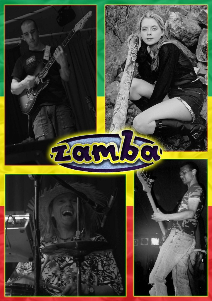 Zamba in action